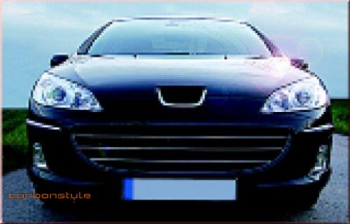 peugeot 407 grill